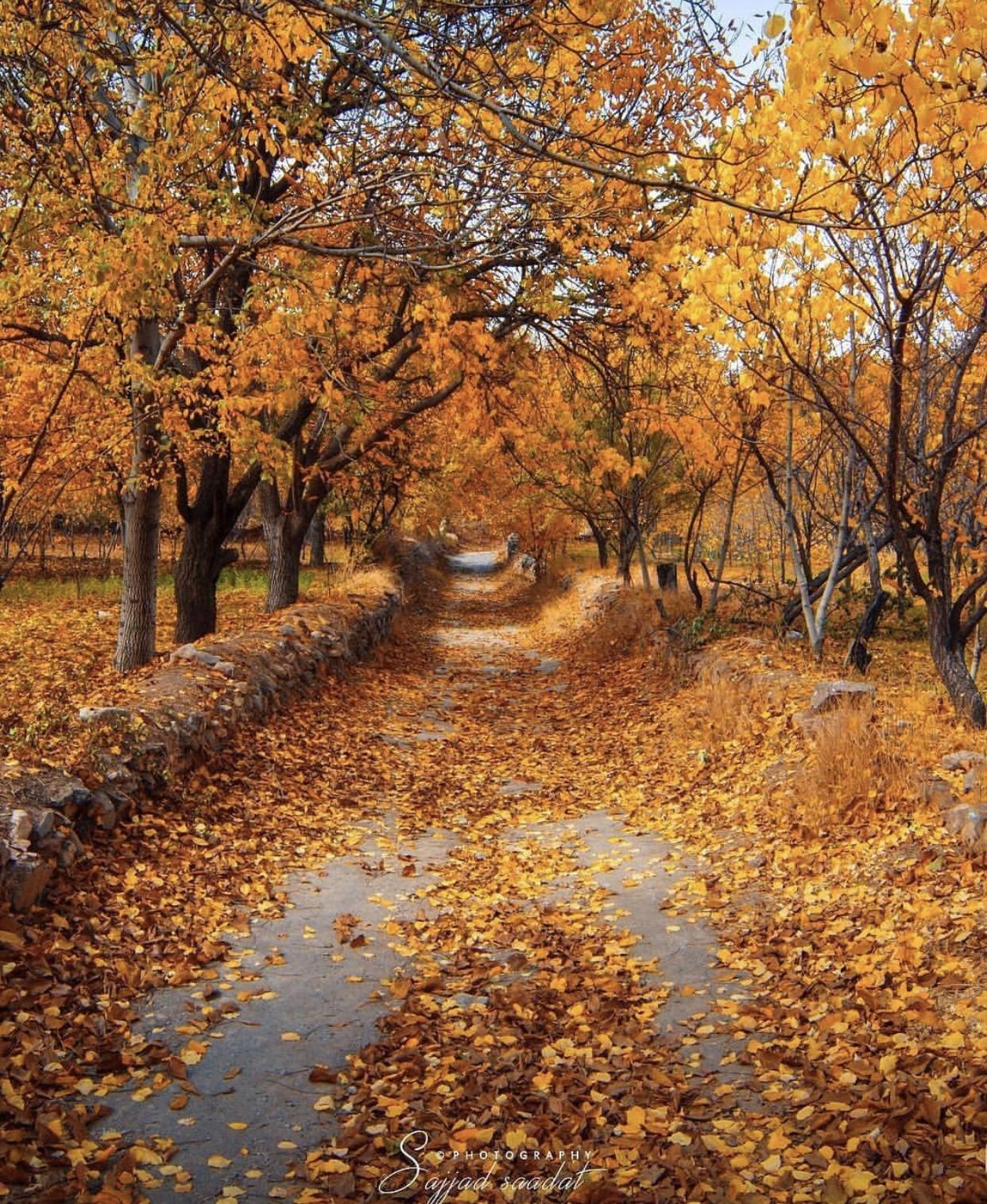 عدسة ايرانية: الخريف في خوانسار قرب أصفهان 3