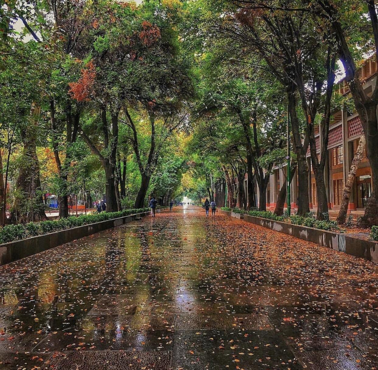 عدسة إيرانية |متنزه الحدائق الأربع في أصفهان 1
