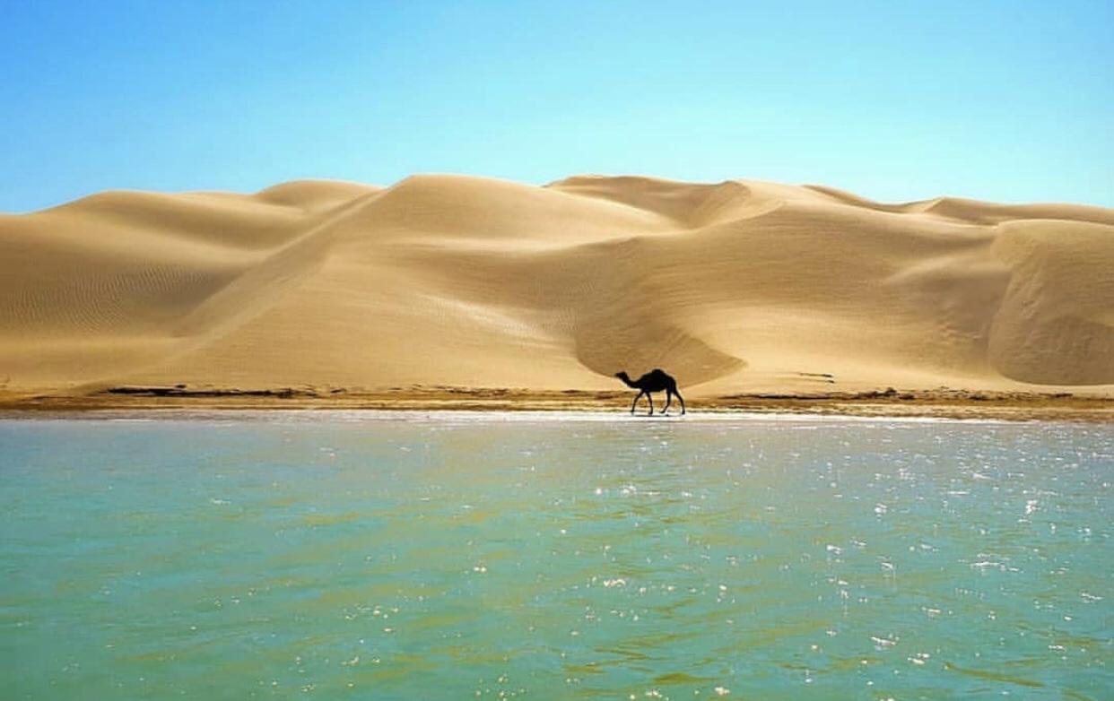 عدسة إيرانية: لقاء المحيط والصحراء 1