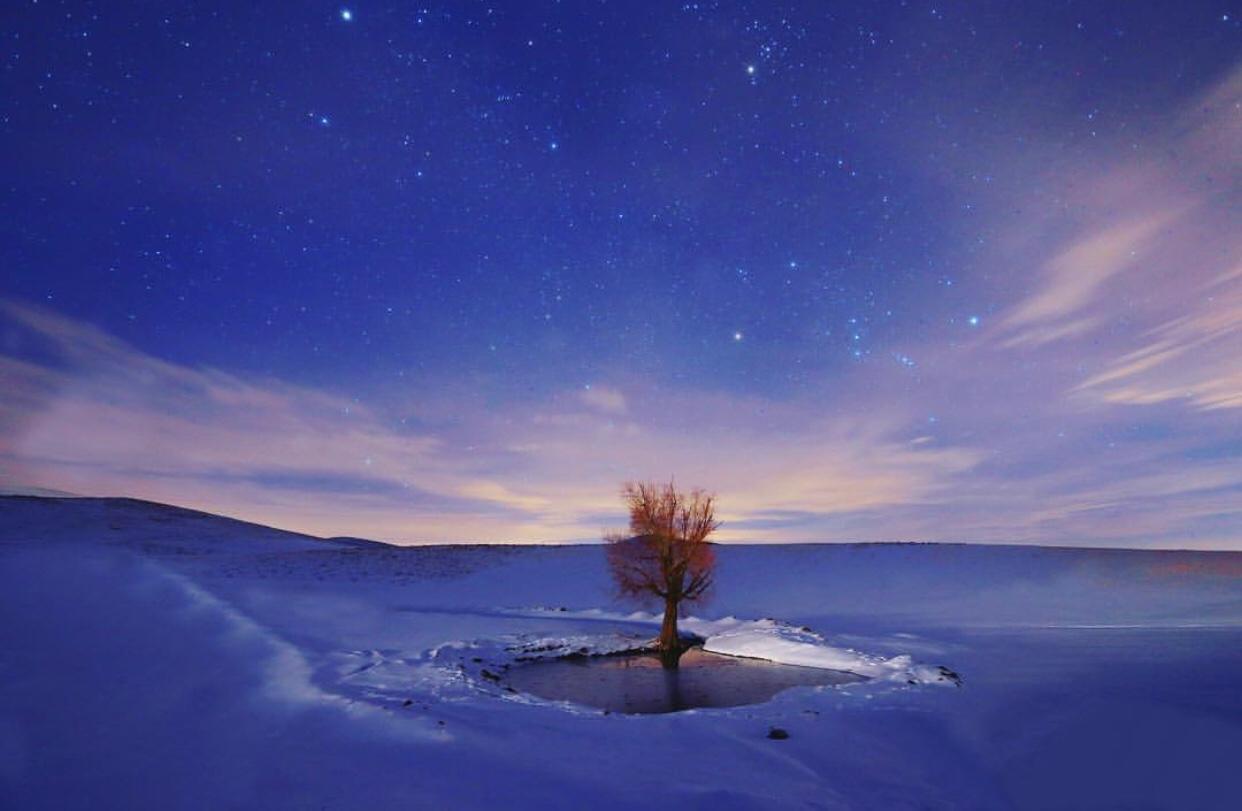 عدسة إيرانية: شجرة وسط بحر من الثلج في همدان 3