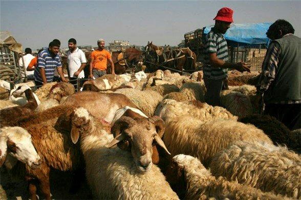 الغلاء يُبعد اللحوم الحمراء عن مائدة الإيرانيين والإعلام الرسمي يدعو لتجنبها لأنها تسبب السرطان! 2